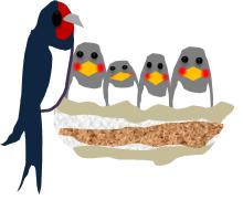 燕の子育てのイラスト