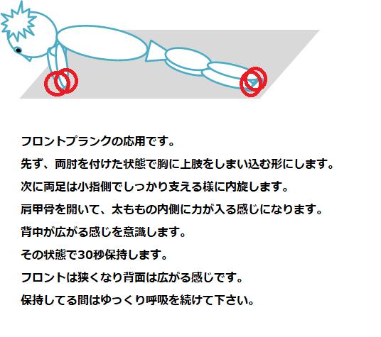 フロントププランクの応用の説明