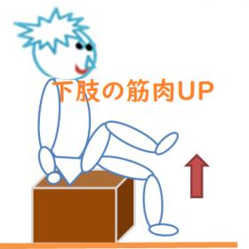 下肢の筋力UP