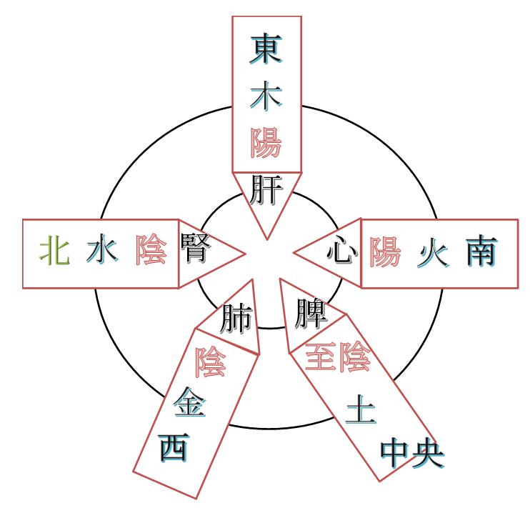 陰陽五行の図