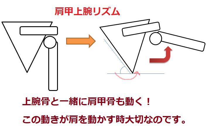 コッドマンリズムの図