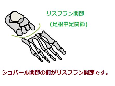 リスフラン関節の絵